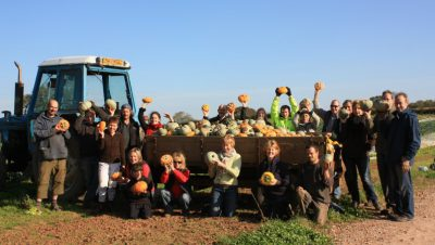 Boomtime for The Community Farm
