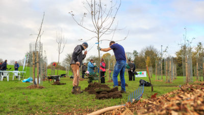 Spring art programe at Whitchurch & Hengrove Community Orchard