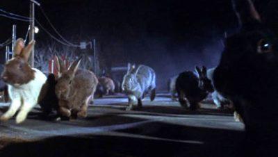 Bristol Bad Film Club: Night of the Lepus