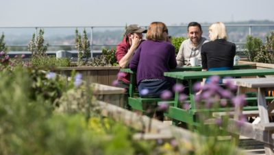 Herb garden opens on the roof of Southmead Hospital