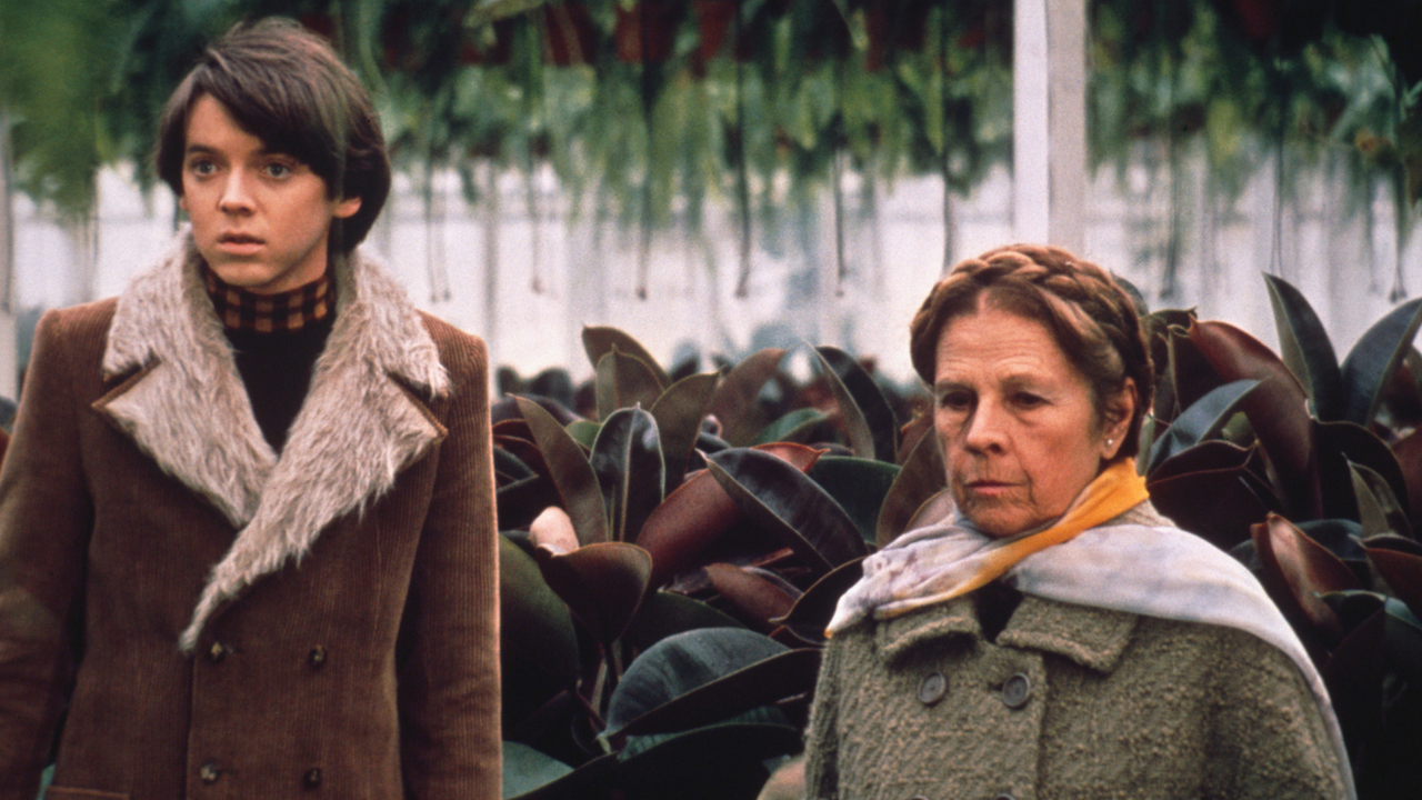 Harold and Maude | What's On | Bristol 24/7